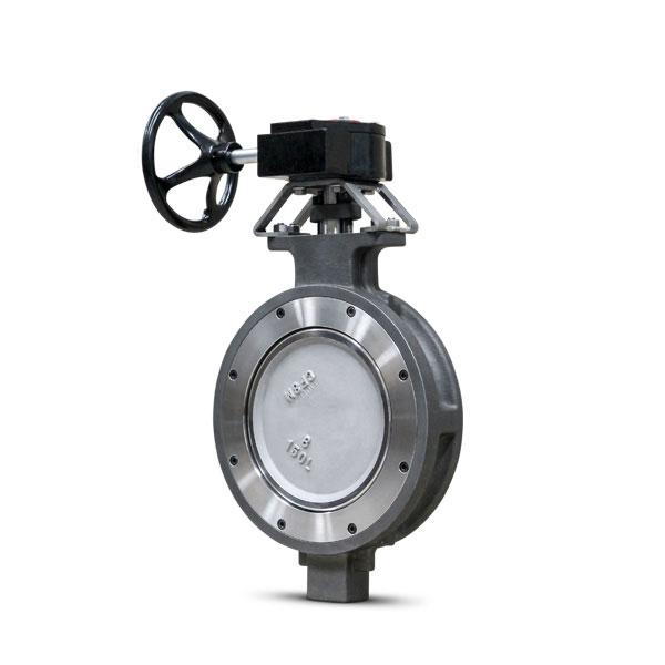 High performance butterfly valve FluoroSeal