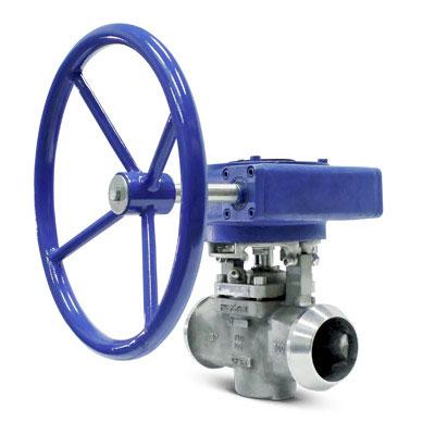 custom plug valve FluoroSeal
